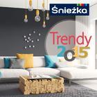Śnieżka trendy 2015